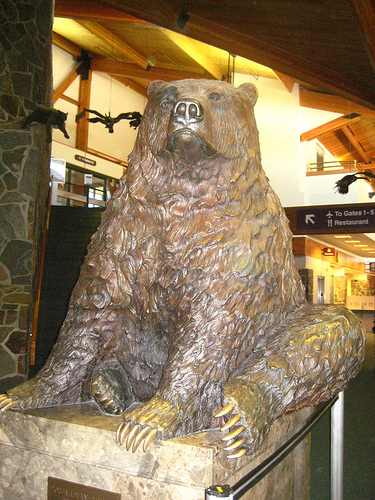 """Grizzly Bear"" Big Sky, Montana, Gallatin Field Airport"