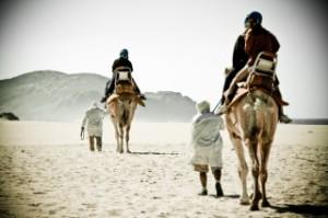 Camel Safari Tour, Los Cabos, Mexico, travel