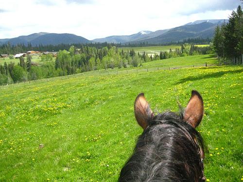 """Echo Valley Ranch"" British Columbia, Canada, travel"
