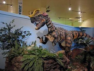 """Dinosaur Journey Museum"""