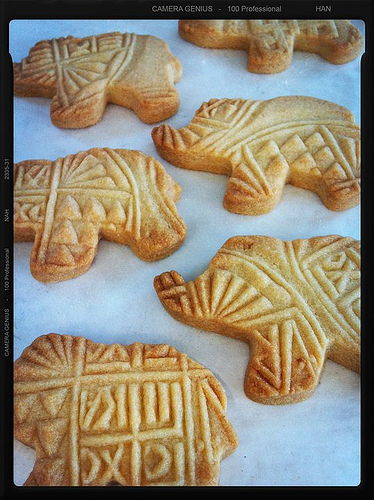 """Queen City Elephant cookies"""