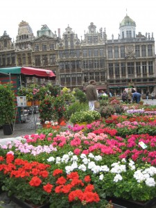 Brussels Flower Market