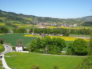 """Gruyere countryside"""