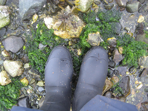 """Kamik"" rubber boots"