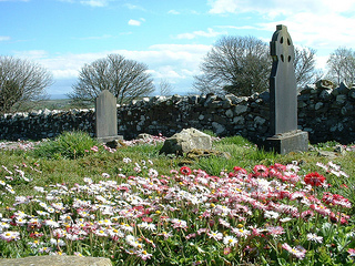 """County Mayo Cemetery"""