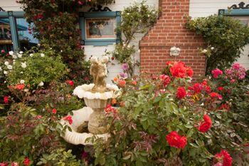 Spectacular gardens surround the B&B inn.