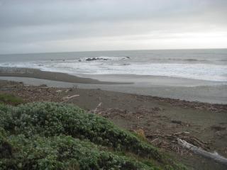 Moonstone Beach, Cambria, California, travel, Nancy D. Brown