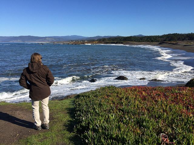 mackerricher state park, mackerricher beach, bushman jacket, bushman agricola jacket, california, beach
