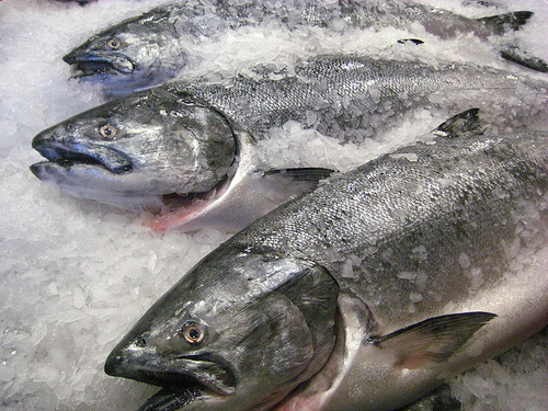 """Pike Place Market Salmon"""