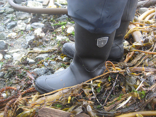 """Kamik"" boots"