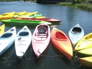 Sunriver kayaks, stand up paddle boarding, deschutes river, nancy d. brown