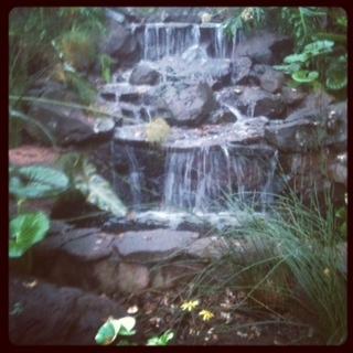 """Saratoga Oaks waterfall"""