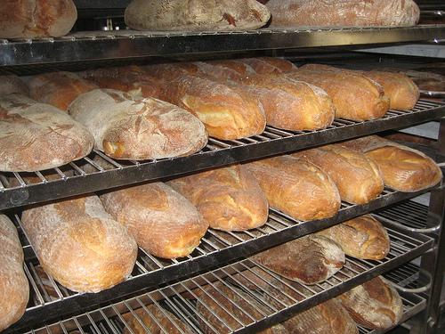 """""""Semifreddi's country levain bread"""""""