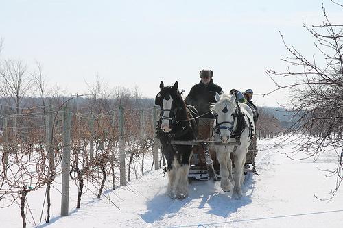 sleigh ride, Door County