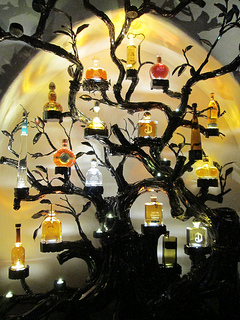 Javier's Tequila Tree