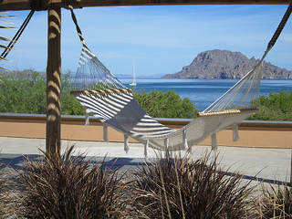 Villa del Palmar hammock