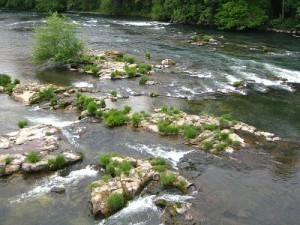 """""""Willamette River"""" Oregon"""