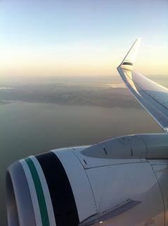 airplane engine, wing
