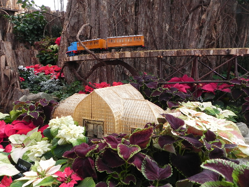 Cincinnati's Krohn Conservatory made from nature
