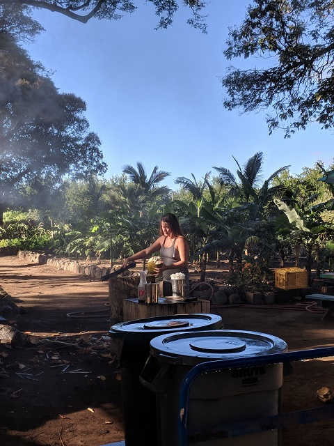 woman chopping coconut