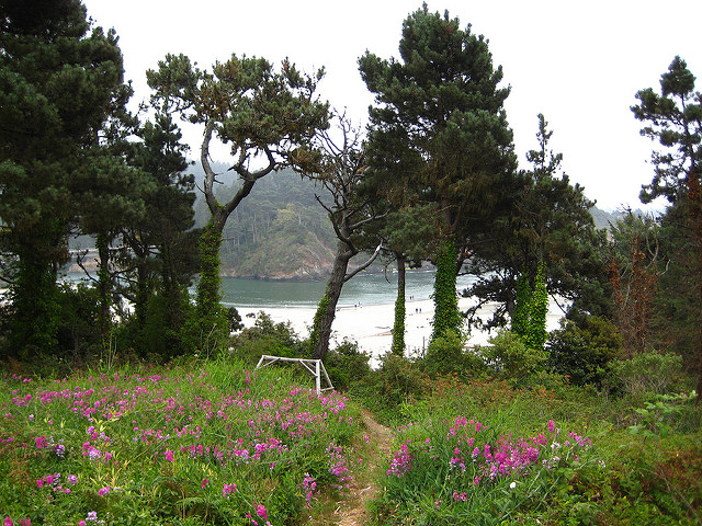big river beach, mendocinos eco-friendly alegria inn, mendocino bed & breakfast