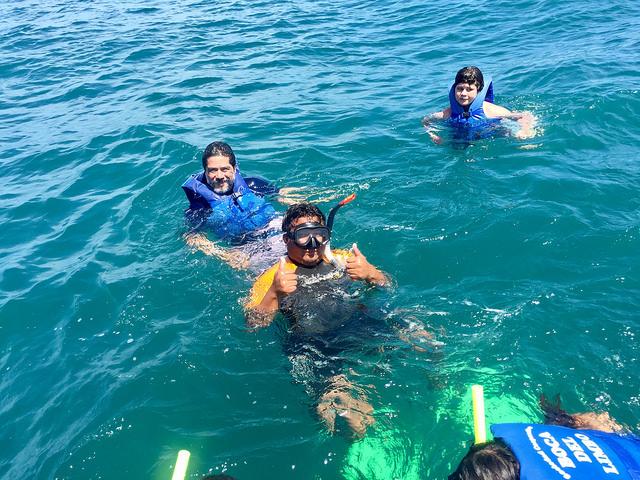 aquaworld whale shark swim, cancun, mexico, mexican caribbean sea, ocean, snorkeling