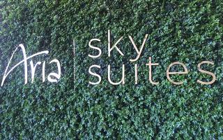 aria sky suites, las vegas, nevada, aria resort & casino