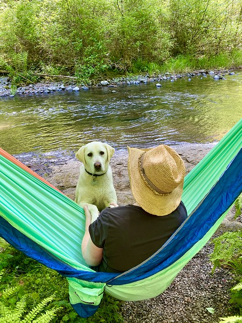 Bear Butt Hammock with dog by river.