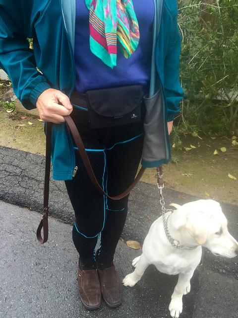 buddy pouch, travel gear, dog walking hands free bag