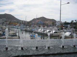 Los Cabos, Mexico, marina, travel, Nancy D. Brown