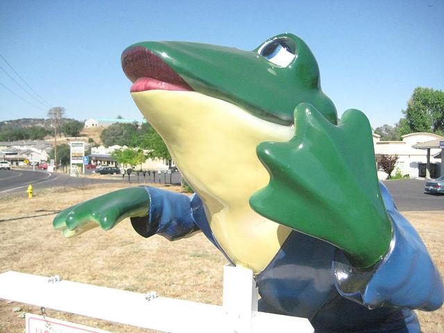 frog, mark twain, calaveras county, frog jumping,