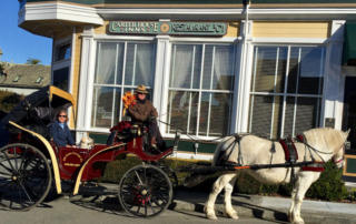 old town carriage co, carter house inns, eureka, california, humboldt county