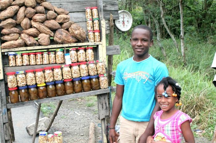 Cashews-in-the-Dominican-Republic