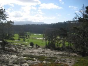Cypress Point, golf, pebble beach, travel, nancy d. brown