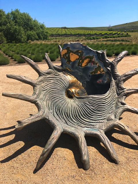 stellaris solaris seashell sculpture, marc quinn artist, donum estate sculpture park in sonoma california