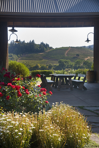 """Dutcher Crossing Winery"" Dry Creek Valley, Healdsburg, California"
