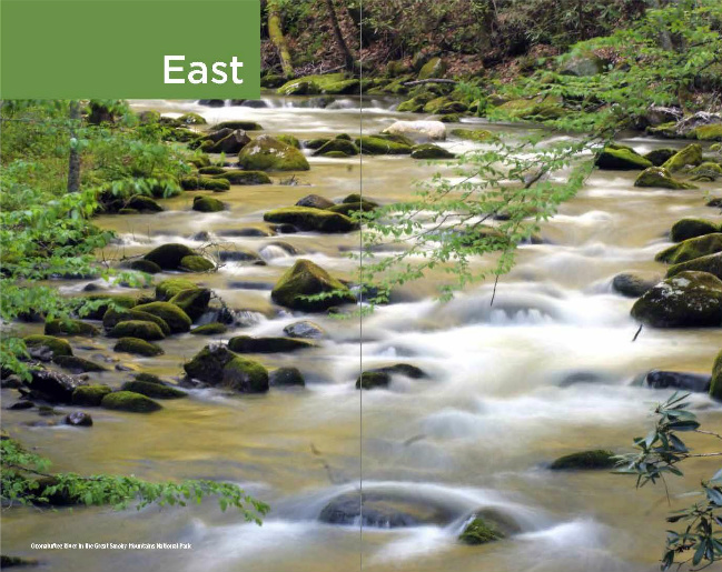 Section divider. Photo of Oconaluftee River, Smokey Mountains National Park
