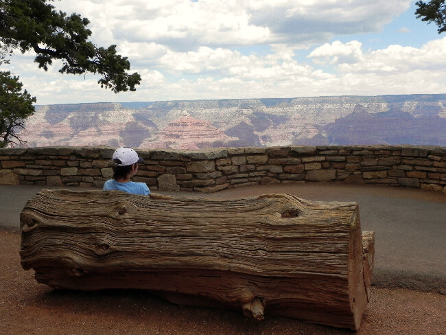 My son at the Grand Canyon doing an observation drawing for his first Junior Ranger experience