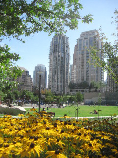 Emery Barnes Park, Vancouver, British Columbia, things to do, Nancy D. Brown