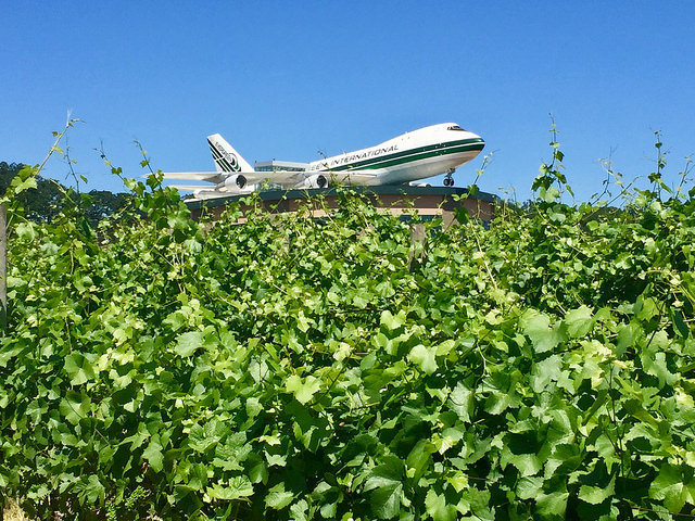 airplane, vineyards, evergreen aviation and space museum, mcminnville, oregon