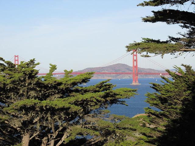 golden gate bridge, lands end, san francisco, california, bridge, golden gate