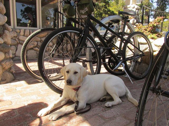 mountain bikes, bike rentals, the hideaway carmel, carmel, california