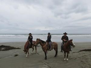 """Morro Strand State Beach"" horseback riding"