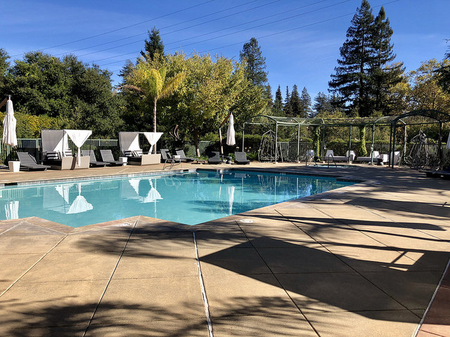 hyatt regency sonoma wine country pool, hyatt regency swimming pool, sonoma wine country hotel, santa rosa hyatt regency hotel