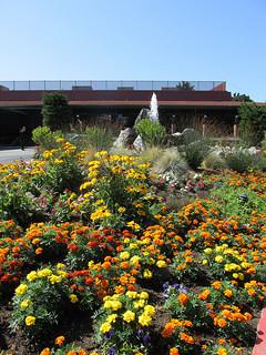 """""""Hyatt Regency Monterey"""" flowers"""