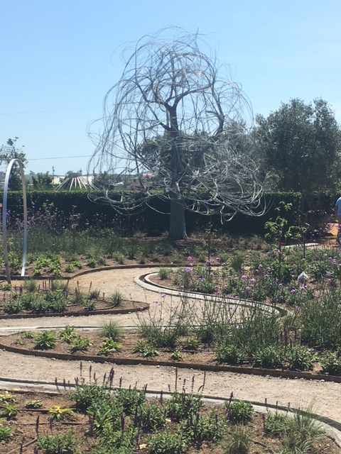 The view from the new Sunset Magazine gardens at Cornerstone Sonoma
