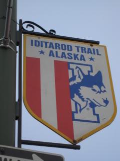 """""""Iditarod Trail"""""""