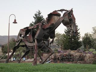 """Jamieson Ranch"" horse"