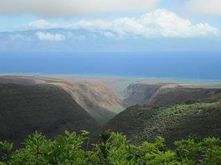 Koloiki Ridge, Lānaʻi