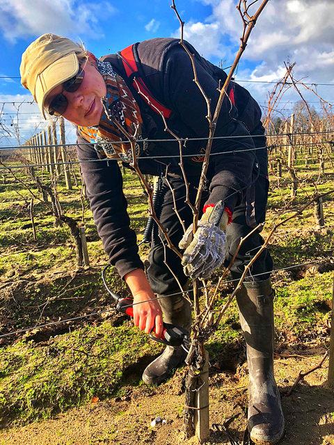 lauriane, chateau corbin, saint emiliion, vineyard pruning, dordogne valley, grand cru classe vineyards, france